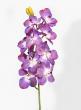 31in Purple Vanda Orchid