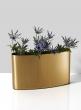 Bretagne Matte Gold Curved Vase, 7in H