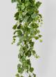 5ft Grape Ivy Hanger