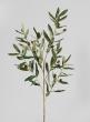 41in Olive Branch Spray