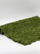 48 x 18in Moss Mat