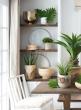 9in Round Paulownia Wood Vase