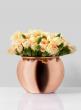 Copper Fishbowl Pot