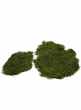 SuperMoss Preserved Sheet Moss