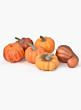 Mini Pumpkins, Set of 6