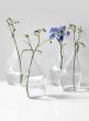 6 1/2in Flat Bottle Vase, Set of 4