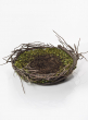 Bird's Nest With Leaves