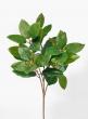 25in Green Magnolia Leaf Spray