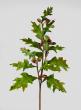 31in Oak Leaf Spray With Acorns