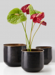 Hammered Antiqued Black & Brass Cube Vases