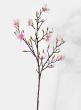 mini pink magnolia flowering branch