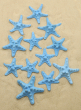 3-4IN BLUE KNOBBY STARFISH, SET OF 12