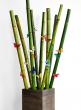 16-, 24- & 32-inch Tall Kiri Wood Planters