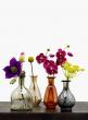 Etched Glass Bottle Vases