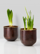 solid brass hammered copper vases amaryllis paperwhites
