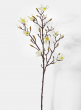 white flowering magnolia branch for southern weddings