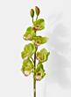 artificial green cymbidium orchid wedding flowers