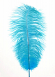 18 - 20in Blue Ostrich Feather