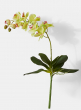 light green phalaenopsis artificial orchid plant