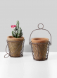 moss clay pot with wire carrier