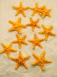 3-4IN ORANGE KNOBBY STARFISH, SET OF 12