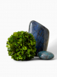 preserved boxwood ball decorative display accents