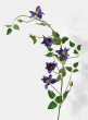 purple clematis wedding event window display decor