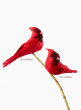 6in & 8in Cardinals