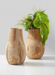 natural teak wood vase succulent anthurium floral arrangement